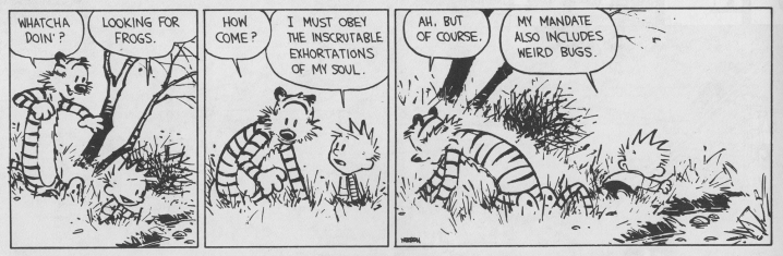 Calvin and Hobbes inscrutable